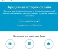 Online-bki
